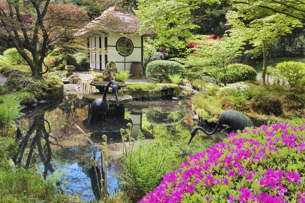 The top 20 best National Trust gardens in the UK revealed