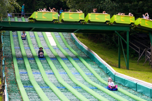Fun for all the family at GreenWood Forest Park in North Wales