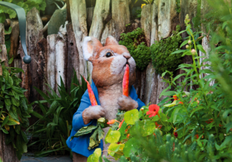 Peter Rabbit at the World of Beatrix Potter attraction in Windermere
