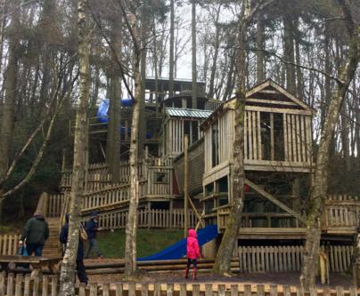 Tree Top Towers tree house