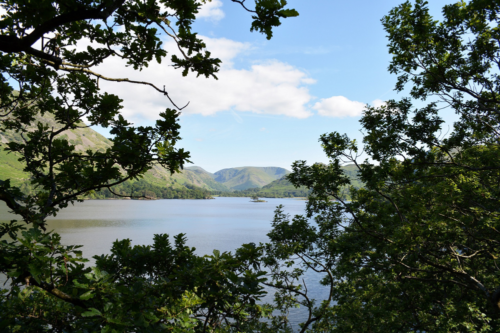a view of Ullswater through the trees