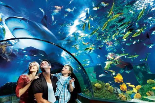 Atlantis by Sea Life in Legoland Billund