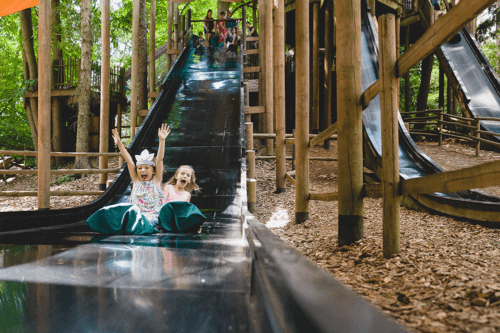Slides at Tree trails at BeWILDerwood Cheshire