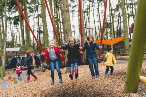 Slides at Tree trails at Swings at BeWILDerwood Cheshire