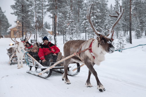 A family reindeer ride