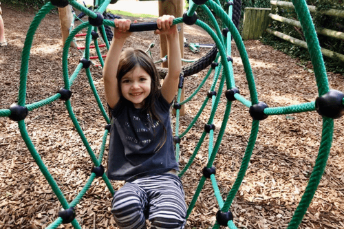 Woodland adventure playground at Cofton Holiday Park