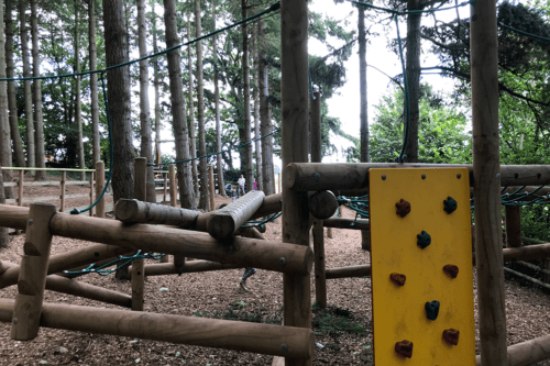 Woodland adventure play area at Cofton Holidays