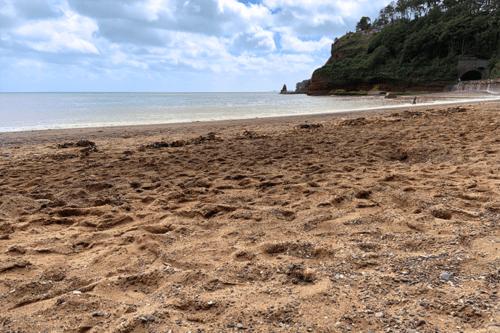 Coryton Cove beach, Dawlish, Devon