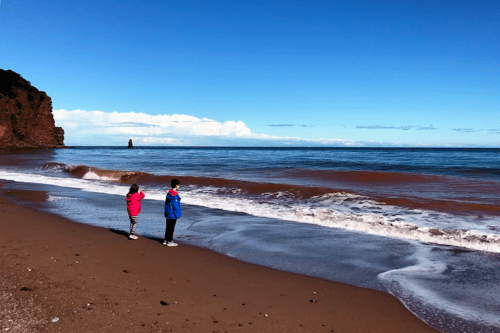 Delight in Devon on a family holiday to Dawlish with our children