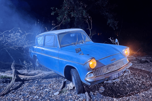 Ron's flying Ford Anglia at Harry Potter: A Forest Experience