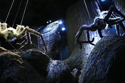 Big spiders in the Forbidden Forest at Harry Potter Studios