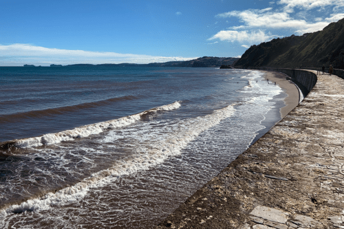 Holcombe Beach in Devon