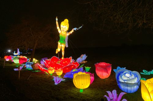 Tinkerbell/a fairy at Lightopia
