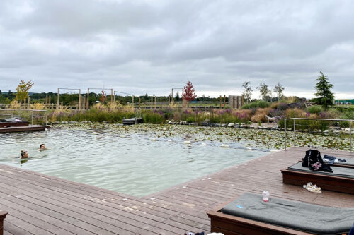 The natural swimming pool at Love2Stay holiday park in Shropshire