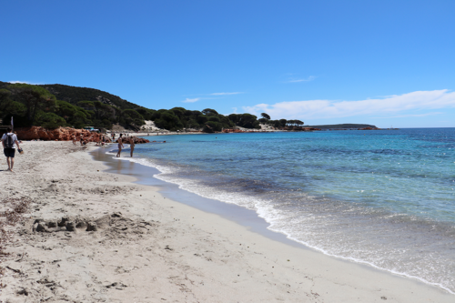 Palombaggia Beach in Corsica