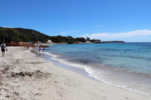 Palombaggia Beach in Corsica