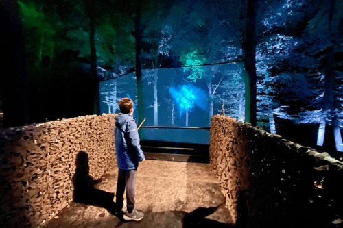 The Patronus Charm at Harry Potter: A Forest Experience