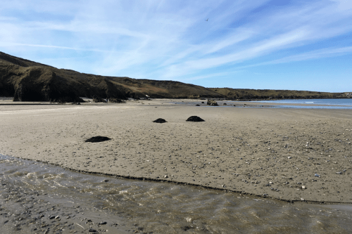 Porth Colman Beach