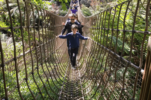 Crossing the rope bridge at the Lost Gardens of Heligan