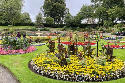 Flowers intThe Dingle garden in the Quarry park, Shrewsbury