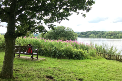 Tittesworth Water/Reservoir, near Leek in Staffordshire – our review and tips