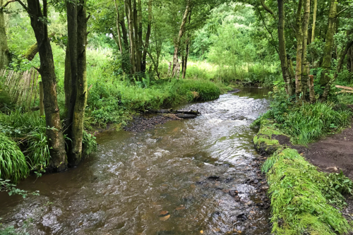 A stream at Tittesworth Reservoir