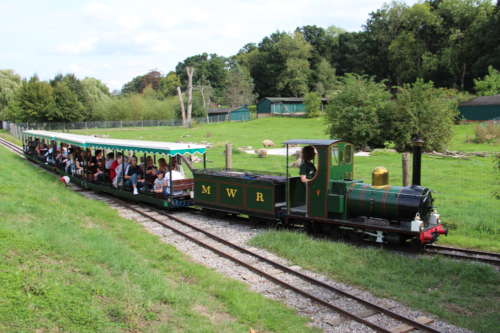 The train at Marwell Zoo