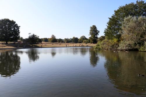 Verulamium Park in St Albans
