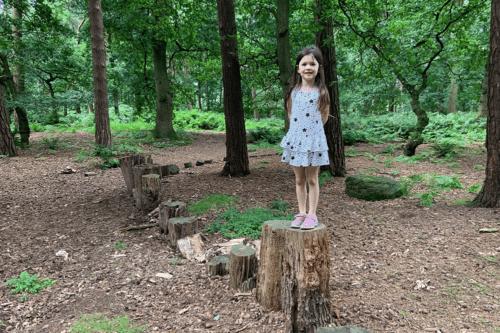 Woodland trail through Abbeywood Estate in Delamere, Cheshire