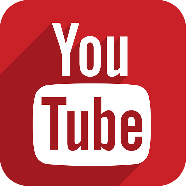 You Tube logo image